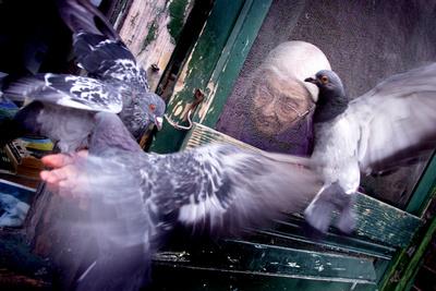 Portfolio image by award-winning Toronto based photographer Peter Power.